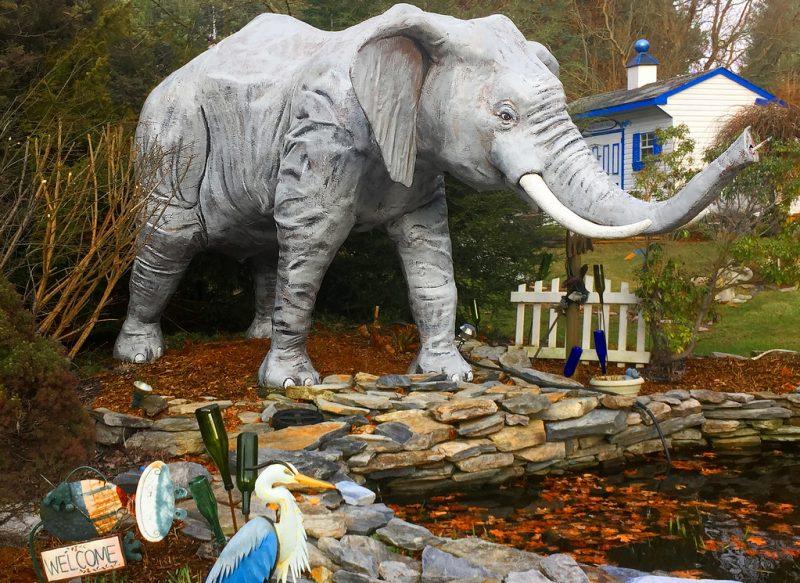 El Museo del Elefante del Sr. Ed