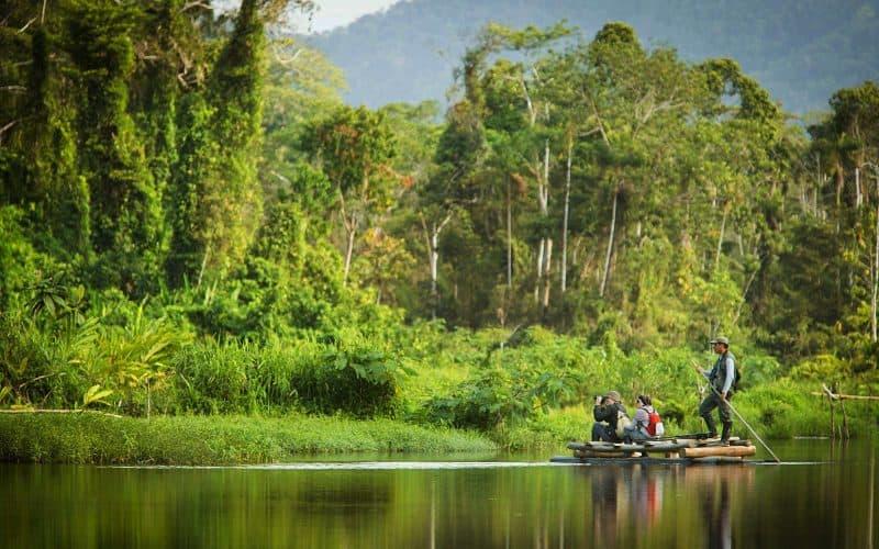 La selva tropical del Manu