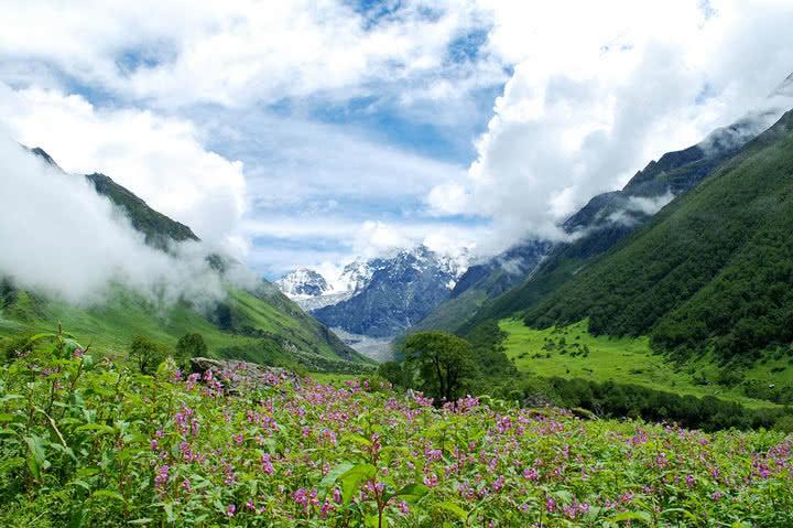 parque nacional valle de las flores