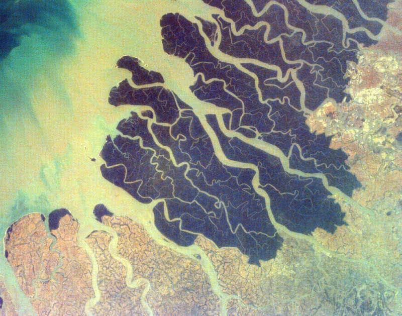 Delta del río Ganges