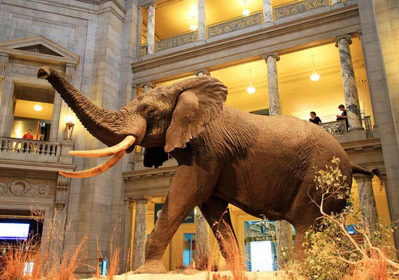 1604062768 908 Los 10 mejores museos del mundo