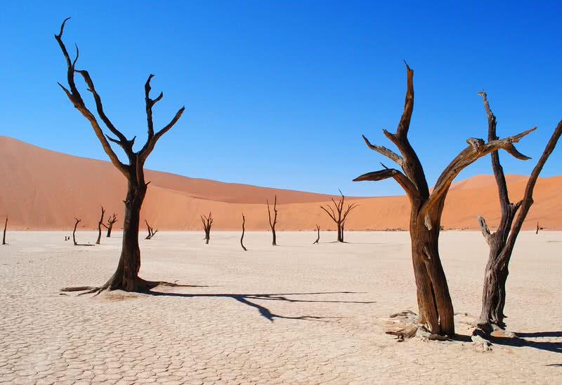 1604303338 723 Los 10 desiertos mas bellos del mundo