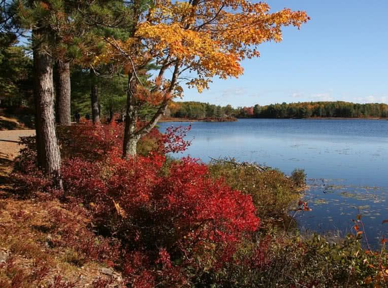 1604646954 614 Los 10 mejores parques nacionales que debes visitar en Estados