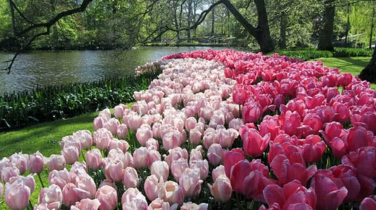 1605088464 73 Los 10 jardines mas bellos del mundo