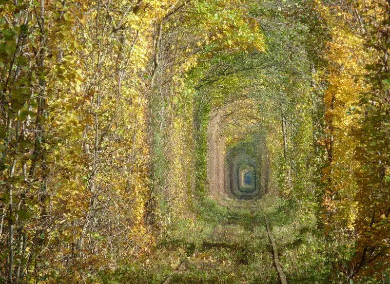 El túnel del amor